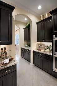 black kitchen cabinets ideas kitchen ideas dark cabinets incredible 12 best 25 kitchen cabinets