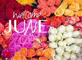 The Month Of June Flower - month of june flower flower inspiration
