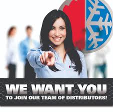 Seeking New Bergstrom Seeking New Distributors
