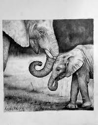 elephant sketchbook