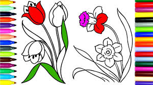 coloring tulip flowers color flowers drawing pages