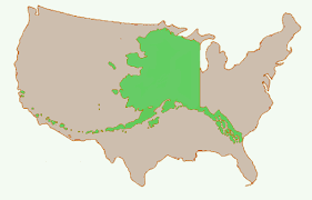 us map anchorage alaska it s different here d agostino on alaskan forestry