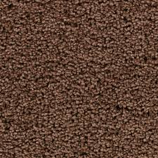 Frieze Rug Beloved Copper Pot Beaulieu Carpet Rite Rug