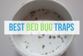 Bed Bug Interceptor Cups Best Bed Bug Traps Bedbugs Net