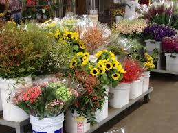 wholesale flowers san diego carlsbad