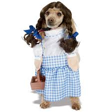 dorothy wizard of oz halloween costumes amazon com wizard of oz dorothy pet costume large dog costume