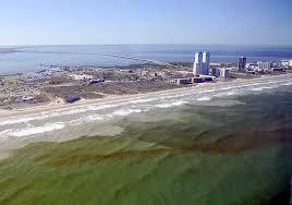 harmful algal bloom forecasts