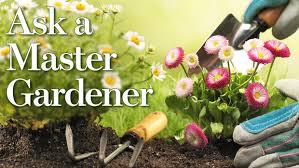 ask a master gardener gift ideas for the gardener on your list