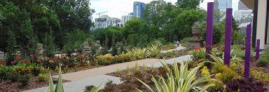atlanta botanical garden skyline gardens garden design