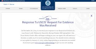 request for evidence what to do immigration learning center