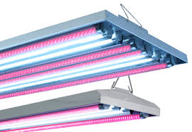 Agroled Led T5 Ho Combination Fixtures Hydroponic Indoor
