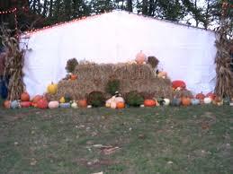 halloween city lancaster ohio neeley pumpkins at alley park lancaster ohio 43130 neeleys