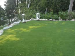 artificial grass wisconsin synthetic turf