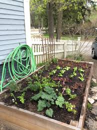 how to make a raised garden bed a concord carpenter