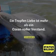 status liebessprüche happy friendship day 2016 best and whatsapp status here