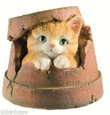 kitten flower pot garden ornament cat in flower pot ornament ebay