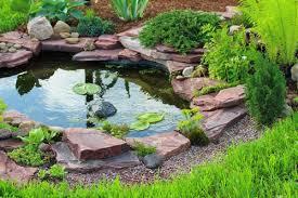 Build Backyard Pond How To Build Backyard Pond Outdoor Goods