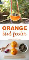 the 25 best identify birds ideas on pinterest bird