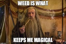 Smoke Weed Meme - smoke weed everyday memes imgflip