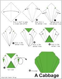 origami gabbiano repollo papel paper works