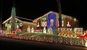 palm harbor christmas lights some can t miss light displays in north pinellas