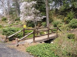 Fortunoff Backyard Store Wayne Nj Laurelwood Arboretum Wayne Nj In Pines Lake Storybook Wedding
