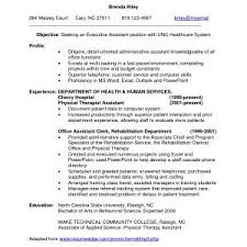 resume exles for experienced professionals resume sles for experienced professionals pdf copy resume sles