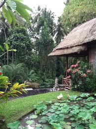 restaurant garden in ubud bali beautiful bali pinterest ubud