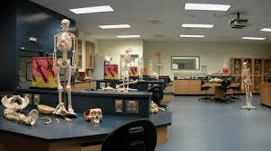 Biology Lab Bench Film And Photo Locations Facilities Rental U0026 Room Reservation