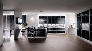 Kitchen Cabinets Black And White 25 Black Kitchen Design Ideas Creating Balanced Interior
