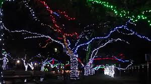 zoo lights houston prices nice houston zoo lights all about house design awesome houston zoo