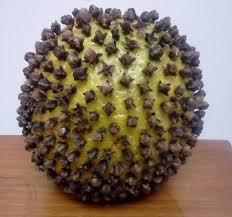 Pomander Balls Make Pomander Balls Now For The Holidays New Hampshire Garden