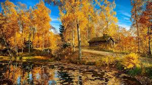 lakes nature lake road autumn trees house landscape norway