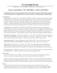 sample letter to loan officer senior loan officer credit officer resume sample vinodomia