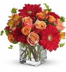 weekly flower delivery weekly and monthly flower delivery