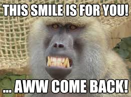 Baboon Meme - this smile is for you aww come back misunderstood baboon