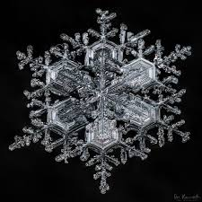 snowflake bentley book sky crystals unraveling the mysteries of snowflakes book sky