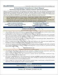 Professional Executive Resume Samples by Examples Of Resumes Resume Samples For Experienced Professionals