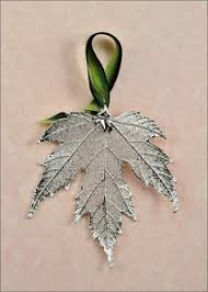 these maple leaves are the real deal seriously real maple leaf