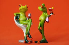sede rana immagini vino dolce sedia sede verde