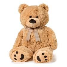 big teddy joon big teddy walmart