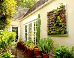 succulent art u2022 insteading