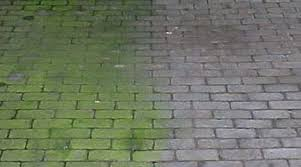 Moss Cleaner For Patios Tikko Stone Care Solutions
