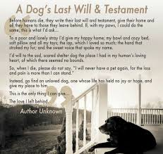 grieving loss of pet what to do when your dog dies crossing the rainbow bridge