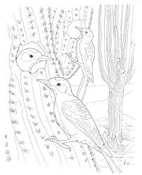 desert coloring pages coyotes howling in desert coloring page free