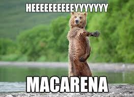 Bear Memes - heeeeeeeeeeyyyyyyy macarena macarena bear quickmeme