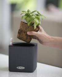 Herb Planter Indoor Herb Planter Mini Cube Self Watering Herb Planter Indoor Herbs