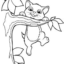 coloring pages coloring pages kitten coloring pages of kittens