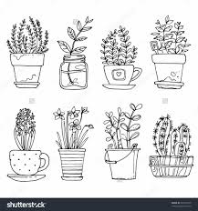 drawn flowers in a container download coloring pages flower pot