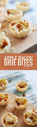Best Appetizers For Thanksgiving Day 543 Best 14 Appetizers Images On Pinterest